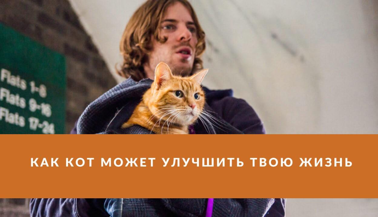 кино на реальных событиях 10 лучших фильмов картинка кот боб