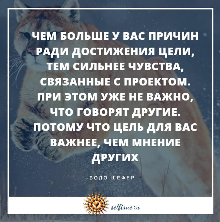 цитаты картинки Бодо Шефера
