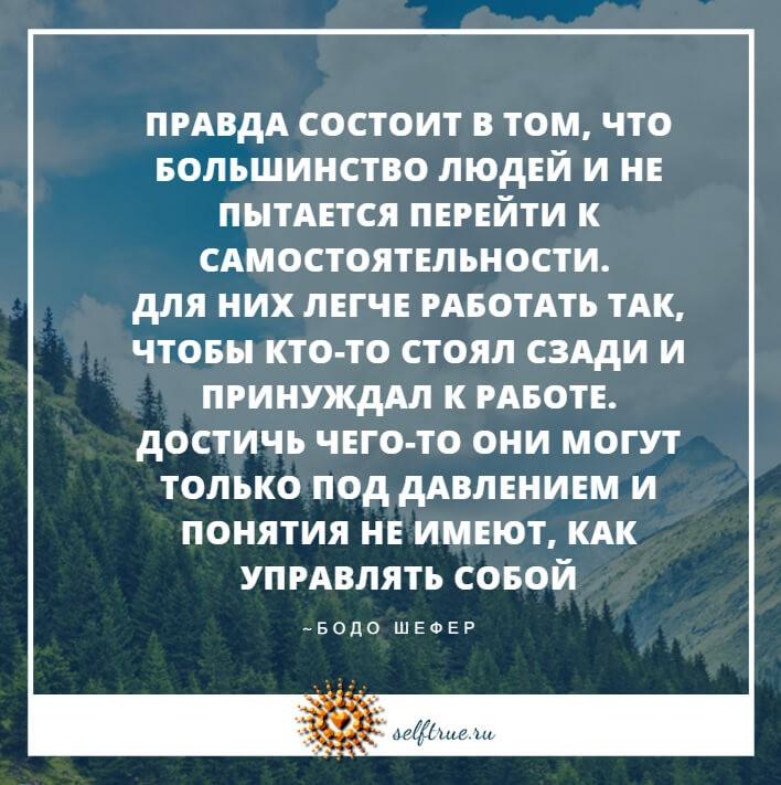 картинки цитаты Бодо Шефера